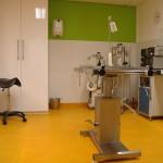 operatiekamer gezelschapsdieren